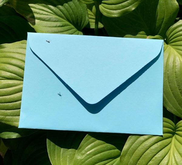 Свадебные крафтовые конверты С5 купить